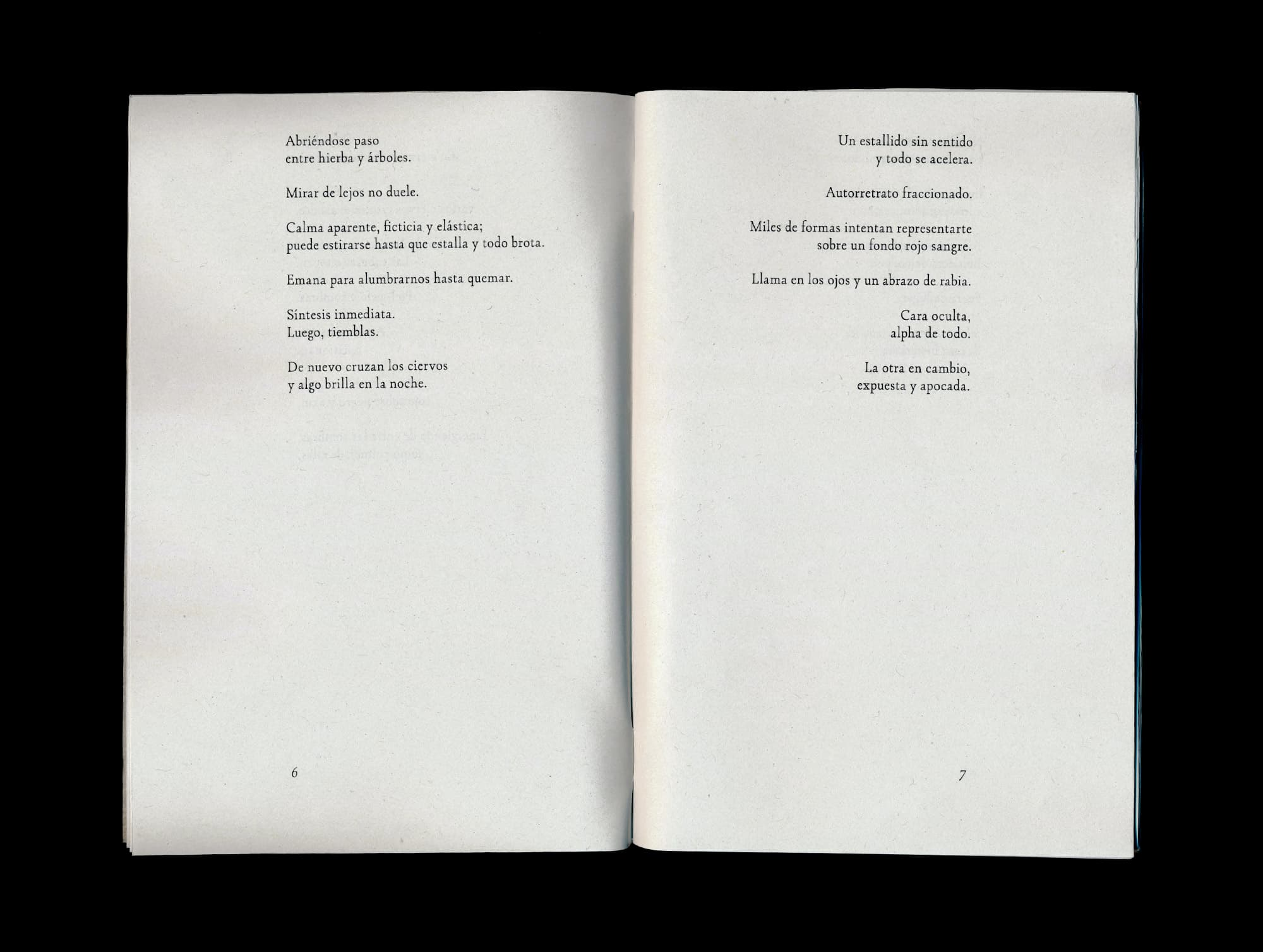 Interior del libro de poesía contemporanea Principios de algo